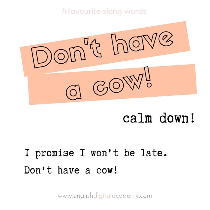English slang Don't have a cow